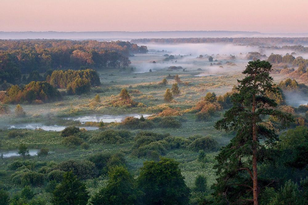 Pemandangan jauh Reshetinskiye