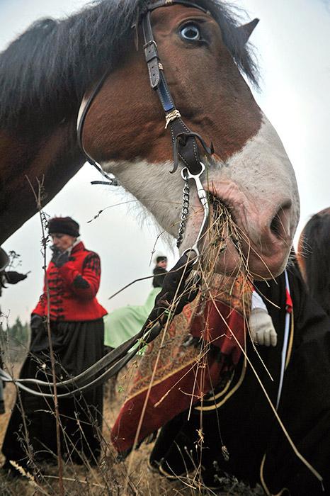 Para pengerajin dari Orde Konyushenny menyiapkan barang-barang seremonial untuk konvoi berkuda ekspedisi perburuan kerajaan di Moskow. Mereka bekerja sama membuat pelana, tali kekang, tapal kuda, sanggurdi dan hiasan dari perak.