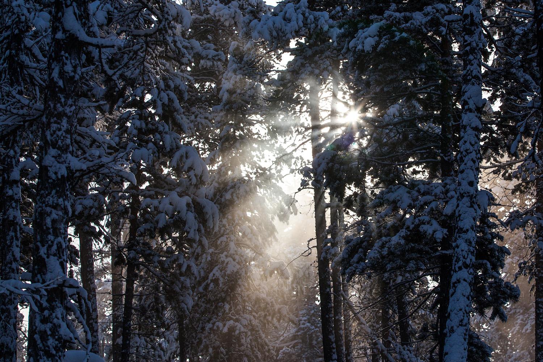 Zima se oduvijek u ruskim bajkama prikazivala kao lijepa djevojka. U potrazi za zimom, može se poći i na kraj svijeta, kao, na primjer, u Jakutiju, najhladniji kraj na zemaljskoj kugli.