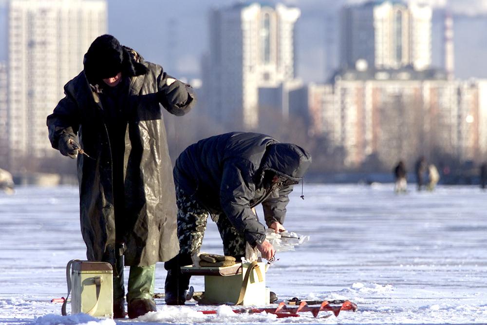 極寒の環境では、魚も異なった行動をとる。生命維持に不可欠な核心機能が弱まり、エネルギーを温存して強い水流や機敏な動きを避けるようになる。冬になると、魚は深い川底に住む。