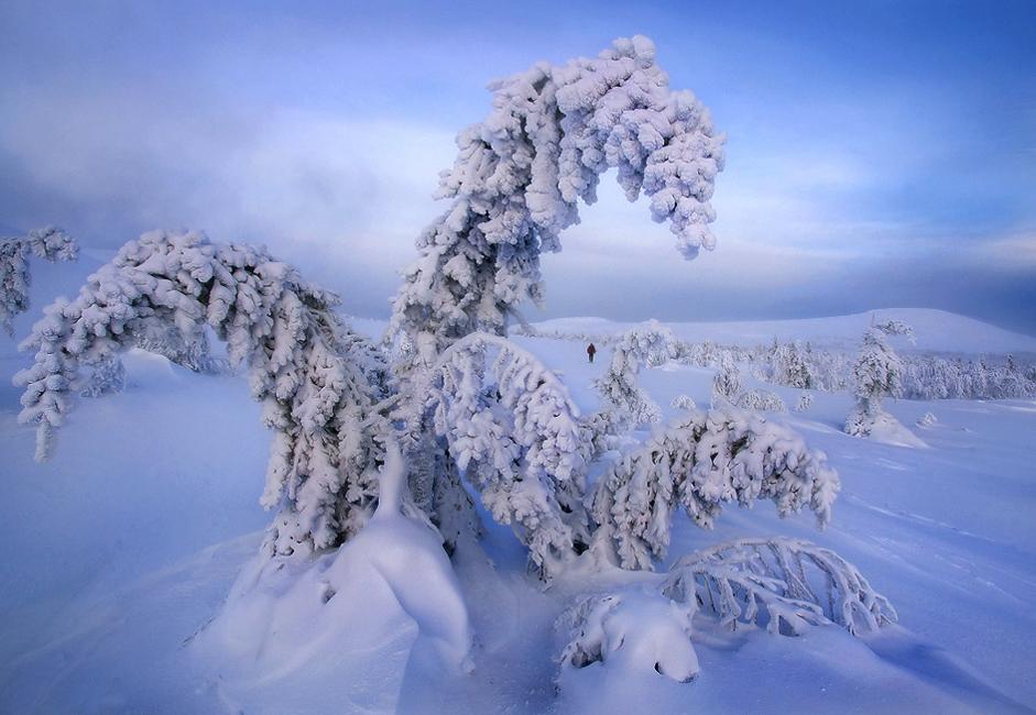 Ljudi je navadno strah ruske zime. Mnogi verjamejo, da je takrat tako mrzlo, da se je potrebno ogreti z vodko in medvedjo kožo.