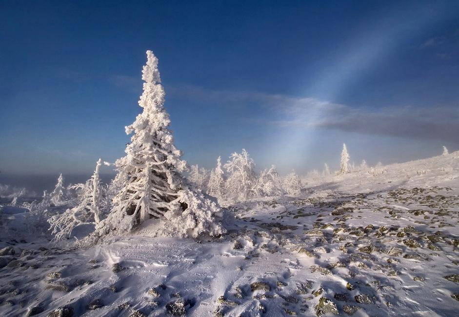 Čeprav je mrzlo, se vam za to kmalu odkupi lepota pokrajine, telo pa v nekaj minutah ogreje tudi aktiven šport.