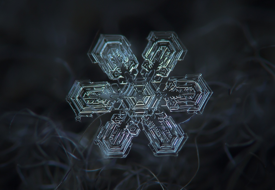 Macro shots of natural snowflakes