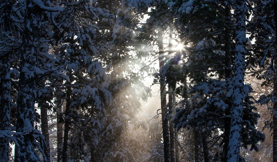 1/13. По традицији, зиму у руским бајкама представља лепа девојка. У потрази за зимом може се кренути и на крај света, чак до његовог најхладнијег дела – Јакутије!