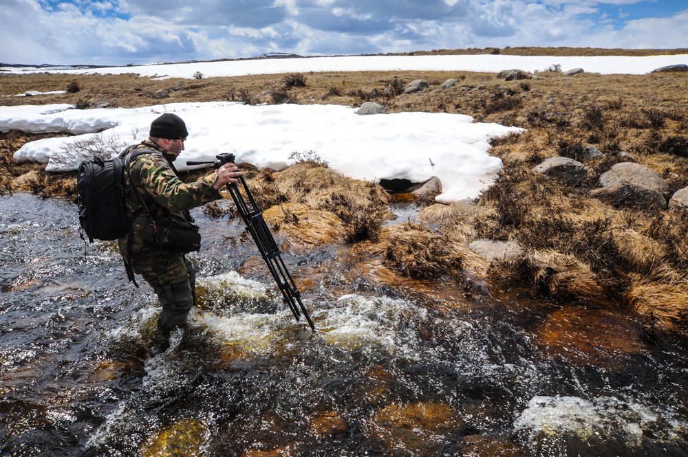 Suaka margasatwa ini, tanah di dekat Sungai Chalyshman, memikat wisatawan dari seluruh Rusia.