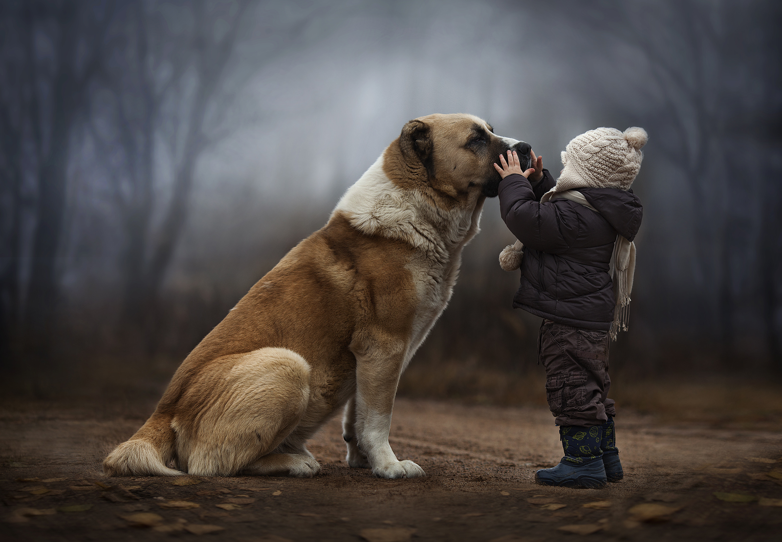A series of photographs by the Russian photographer Elena Shumilova have been making the rounds on Facebook in recent days. Thousands of followers are leaving enthusiastic comments on Elena's page.