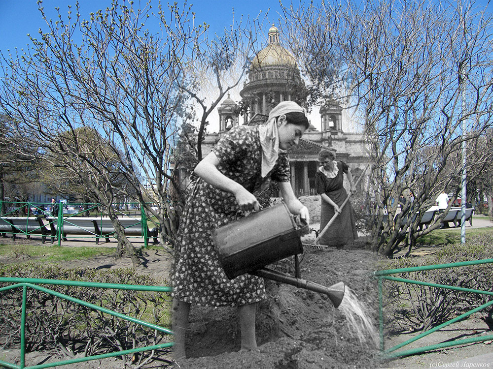 Women tend a garden plot in front of St Isaac's Cathedral. Many of the city's parks were dug up and turned into vegetable gardens in order to provide food for the city.