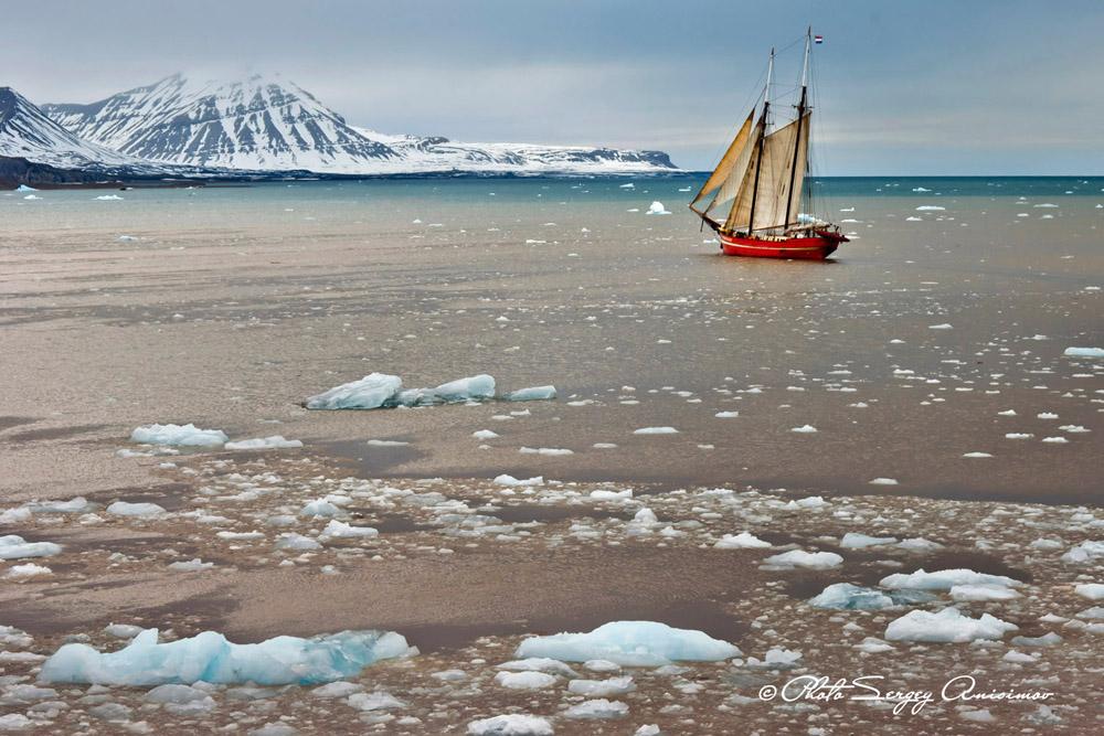 L'Arctique est en train de disparaître sous nos yeux. Chaque année, la calotte glaciaire rétrécit et son épaisseur diminue.