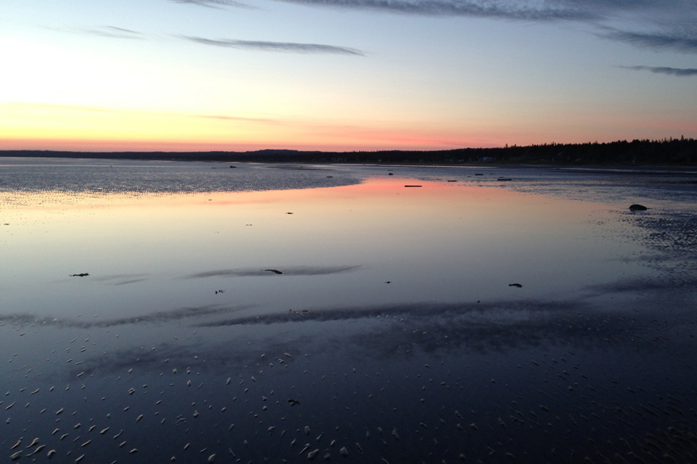 白海の海岸に出るのは容易なことではない。特に電話やナビゲーターが使えなくなる時。まるで海が存在しておらず、湿地と沼地が果てしなく続いているようだ。150キロメートルほどの道なき道を進むと、旅人は岸辺で静寂に迎えられる。