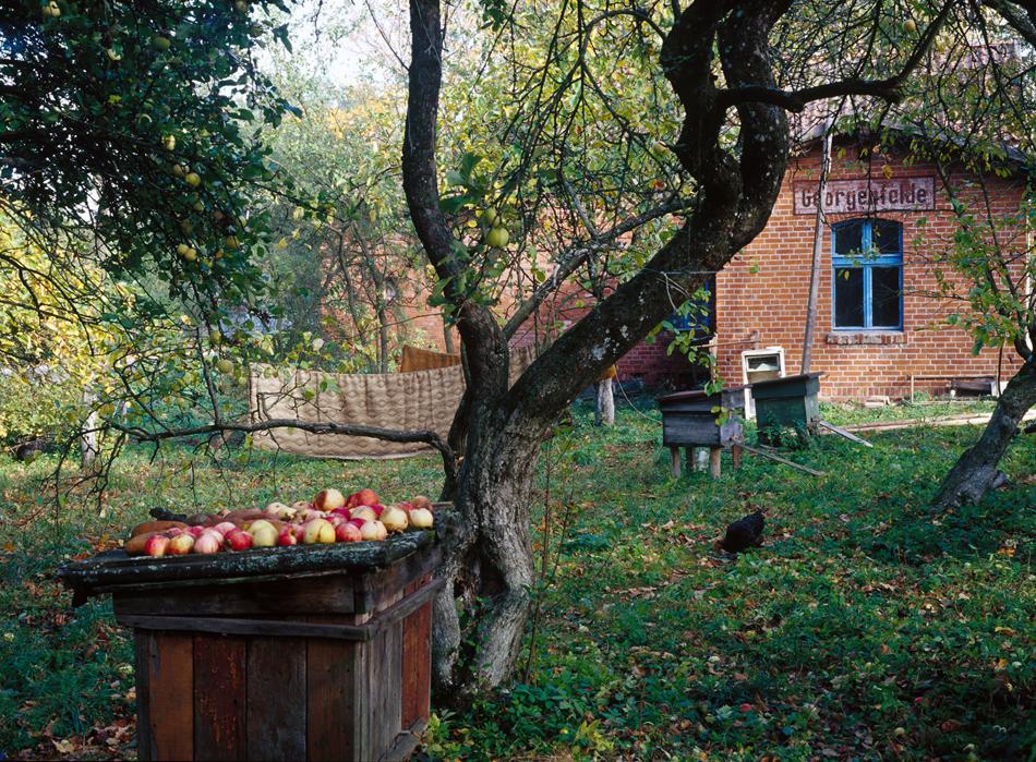 Стара жп гара, Озерки (бивш Георгенфелд). / Докато съветският период започва да избледнява от спомените на областта, символите на други периоди и събития започват да възвръщат значимостта си: 700-годишната история на германска култура в областта, десетките пресечни точки на историческите съдби на Германия и Франция през много векове…