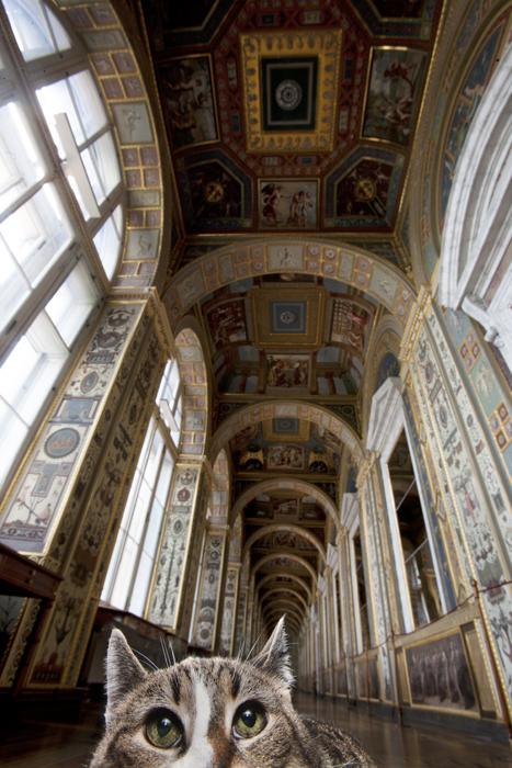 Tihon, Velika dvorana svjetla talijanskog neba. Prozvan po paganskom bogu sudbine, old-timer Tihon izuzetno je diskretan i temeljit. Kao da je sudbina to htjela, Tihon je preseljen iz Zgrade osoblja u Veliki Ermitaž, gdje je postao neformalni vođa svih mačaka u palači.
