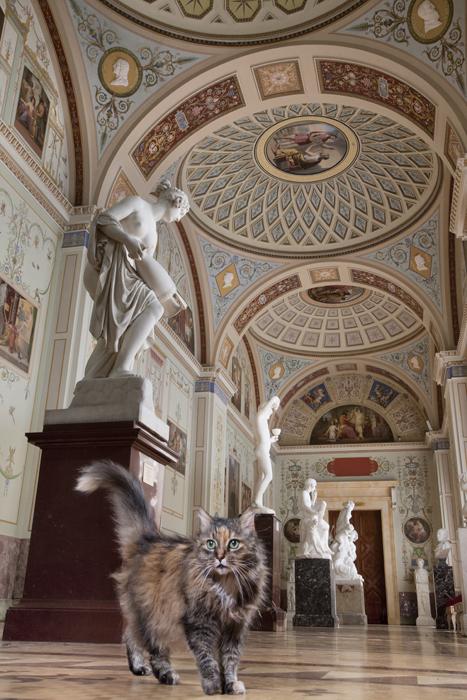 Kisania, na Galeria de Pintura Antiga. Anfitriã cordial, Kisania presta atenção em todos os visitantes do Hermitage, que, no verão, ajudam esta volúvel e gulosa gata a ganhar uma figura arredondada