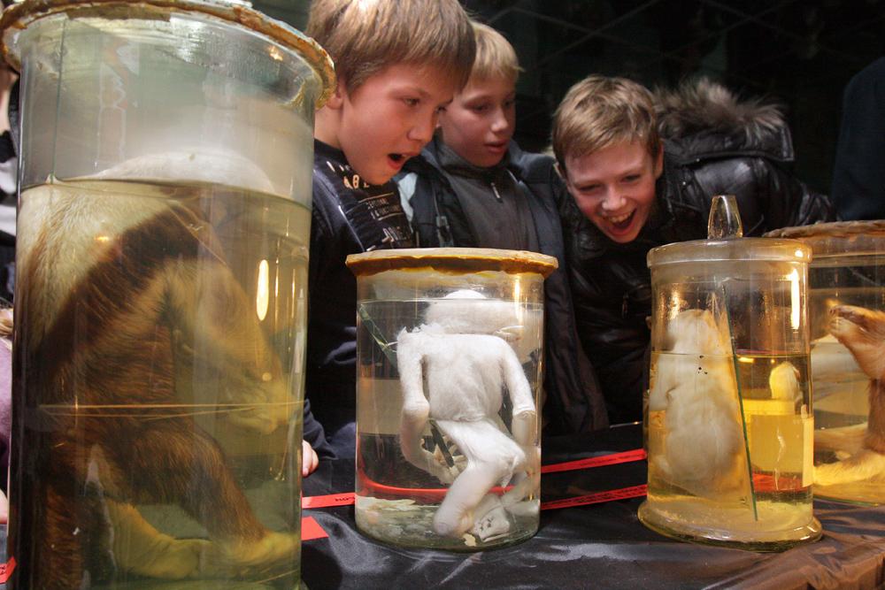 ピョートル大帝は数年にわたりコレクションを集積した。創設5年後、博物館はようやく一般に公開され、入場料は無料だった。これは、「知識を求める人からお金を取るより、彼らに教養と娯楽を与えるべきである」と考えるピョートル大帝の意向によるものだった。