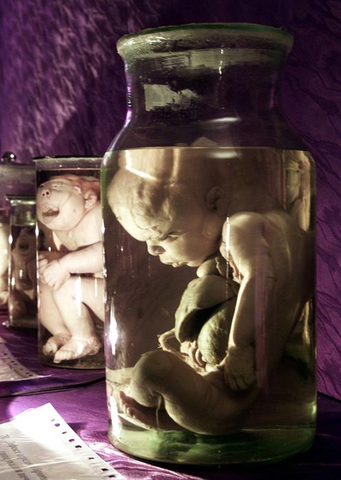 今日博物館には120万点以上の所蔵品が収められている。その民族学コレクション、人類学コレクションと古学コレクションは世界有数のものである。