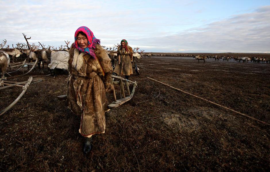 2/14. Најважнији градови у Јамало-Ненецком Аутономном Округу су: Салехард, Нови Уренгој, Надим и Нојабрск. Жене на овим фотографијама потичу из различитих староседелачких народа који овде живе. То су Коми, Ненци и Сељкупи.