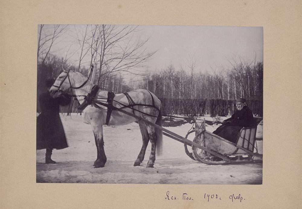 Die meisten Fotoporträts von Tolstoi wurden auf Initiative von Sofia aufgenommen. Ihre Kamera hielt wichtige Ereignisse, aber auch den Alltag fest. // Tolstoi in einem Pferdeschlitten, 1903, Jasnaja Poljana. Foto von Sofia Tolstoi