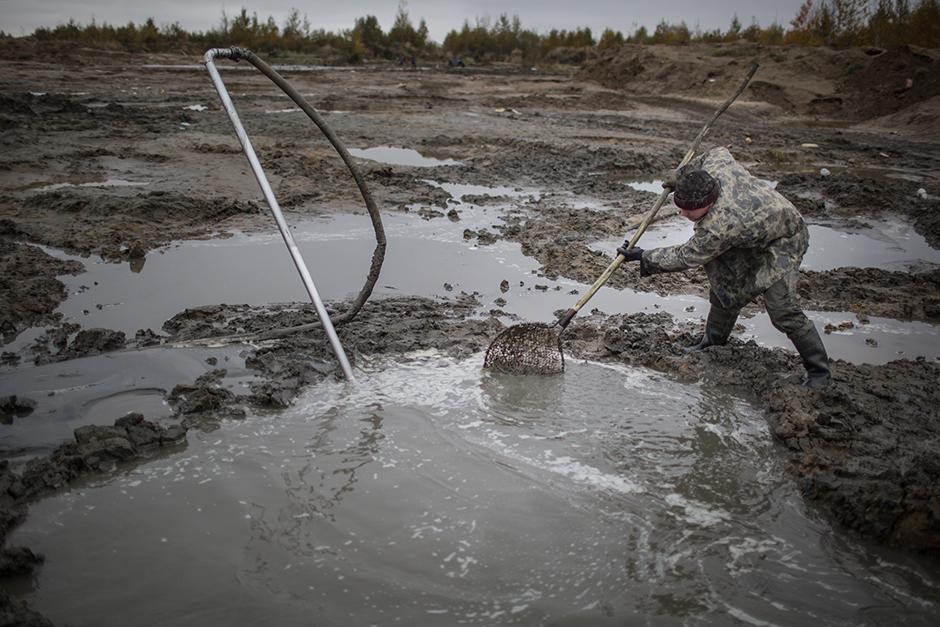 """2/15. Копачи """"на црно"""" ваде ћилибар у импровизованим базенима недалеко од села Храброва у Калињинградској Области."""