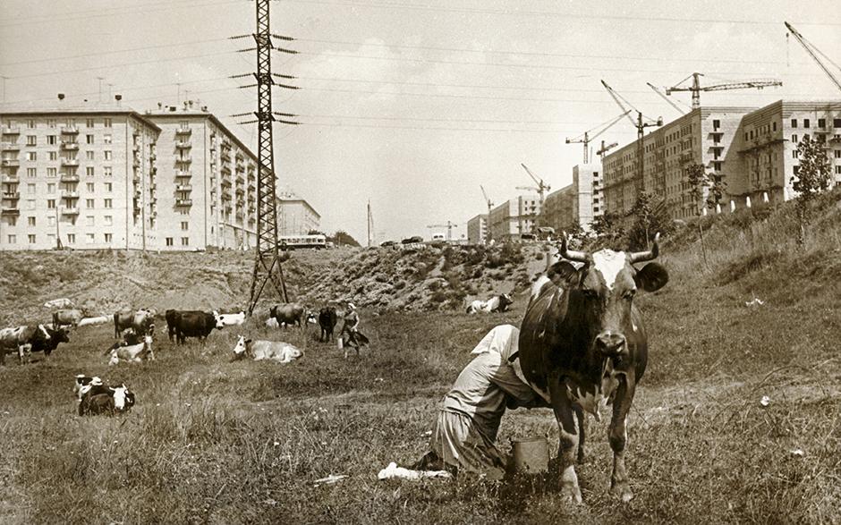 建設中のモスクワ、チェリョームシキ地区、1954年。