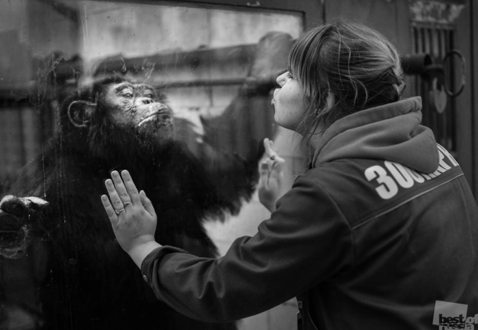 「Best of Russia」とは、鮮やかで独創的な写真を通じこの一年の真のロシアの生活を捉えることを目的とする過去最大級の写真プロジェクトだ。 //動物園職員、チェリャビンスク市