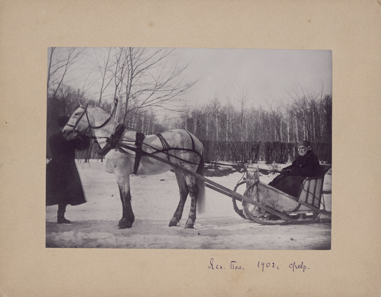 Most of the photo-portraits of Tolstoy were done at the initiative of Sofia. Her camera recorded important events and everyday life // Tolstoy in a one-horse sleigh, 1903, Yasnaya Polyana. Photo by Sofia Tolstoy