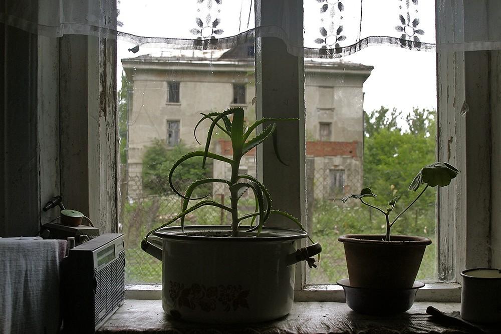 9/12. Поглед из супротног смера: главно здање имања снимљено с прозора куће Клавдије Јегоровне.