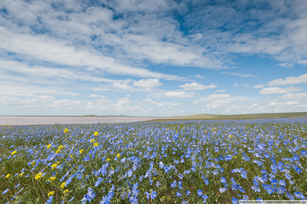 10/12. Величанствена кримска обала је мање насељена и вероватно далеко лепша од Азурне обале.