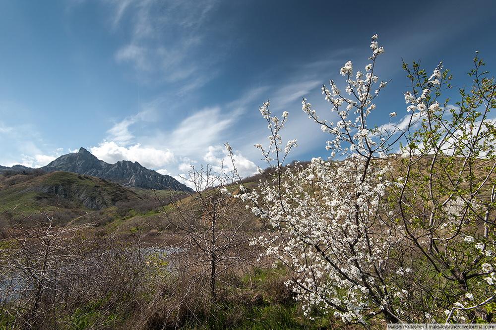 2/12. Полуострво је посебно привлачно у пролеће. Раскош боја мами фотографе да изнова бележе лепоту поља прекривених лалама и зумбулима, и лепоту стабала дивљих јабука и бресака у цвету.