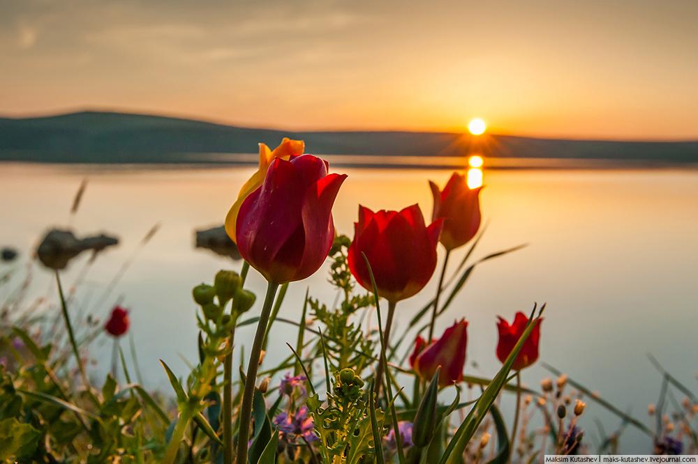 """8/12. Није ни чудо што многи Крим описују као рај на земљи. Научници тврде да 45. упоредник на коме се полуострво налази представља """"златни појас планете"""", односно зону са најповољнијим климатским условима на свету."""