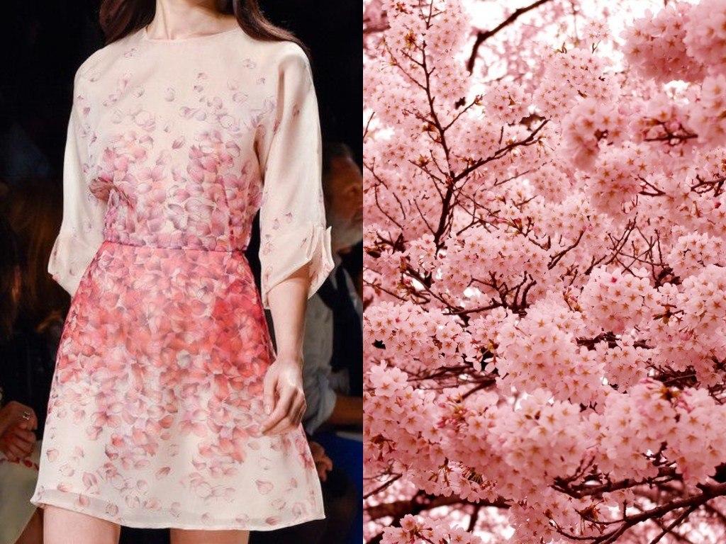 ブルマリン(2015年春夏)と日本の桜の花。