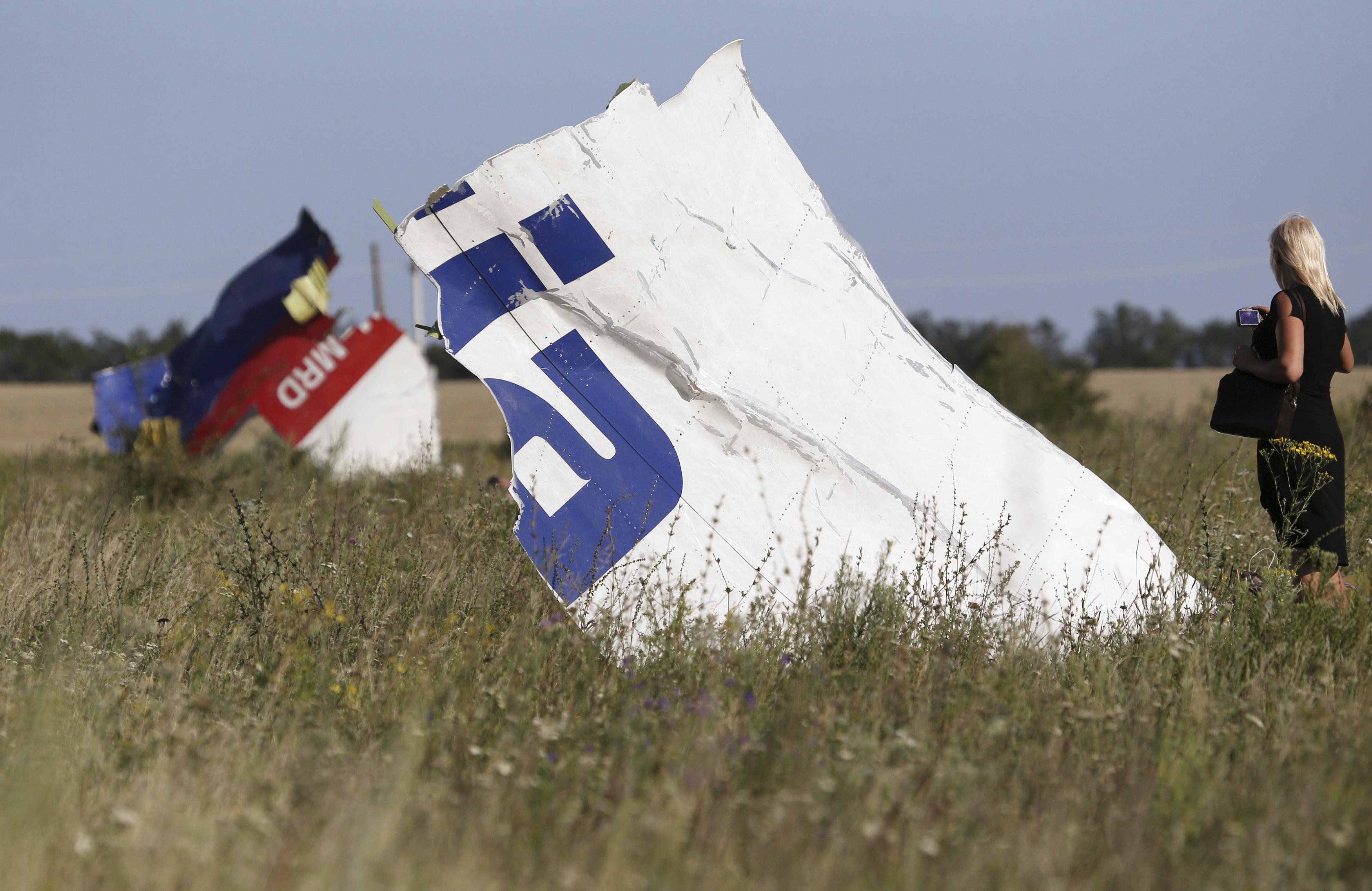 Според мнението на някои експерти протича политизиране на въпроса за разследването на гибелта на полет МН-117.