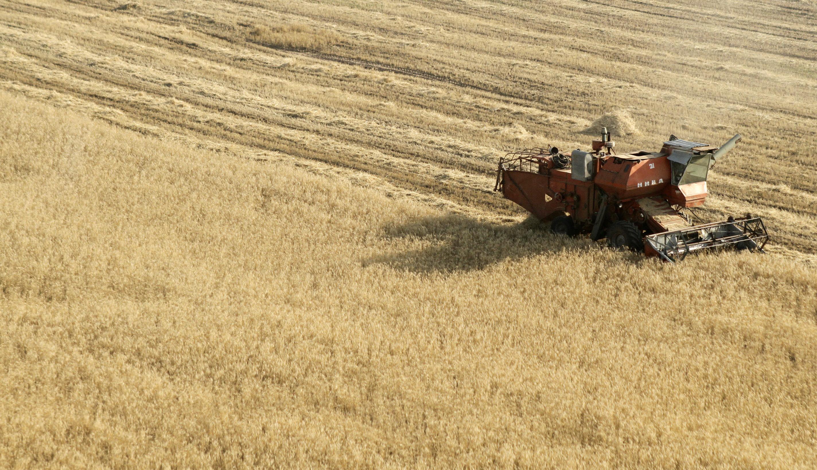 Aumento e diversificação de trocas comerciais agrícolas são esperados