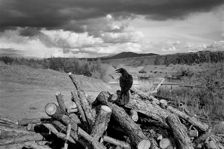 """През 1940-50-те г. в долината на ручея Спокойний имало лагер за изправителен труд, който бил наричан """"Колимското наказание"""". Лагерът поддържал строг режим за рецидивисти и осъждани многократно престъпници. Имало мина, където работели затворниците, включително Варлам Шаламов през 1943-44 г. Днес мината все още е отворена."""