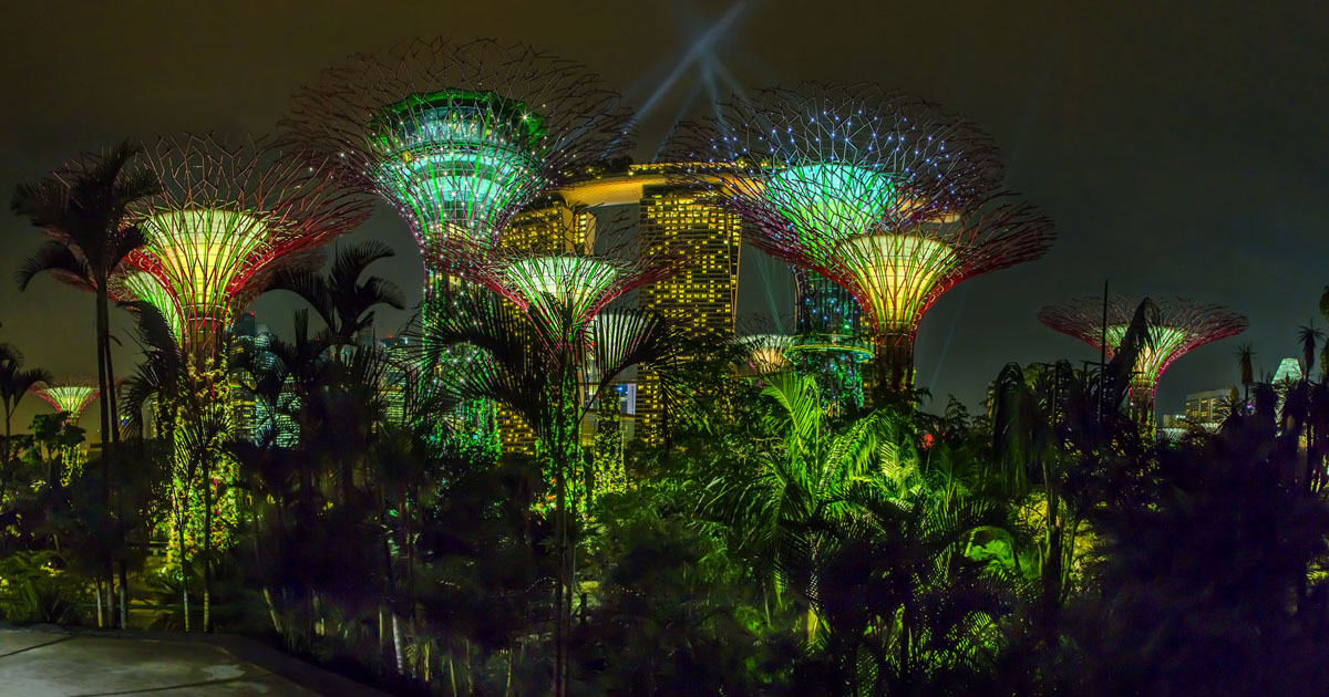 Gardens near the bay. The main attraction is the 18 futuristic trees with pedestrian suspension bridges linking them.