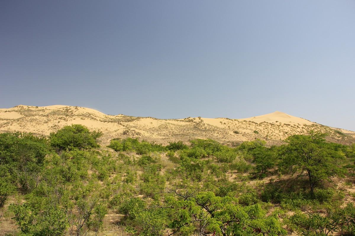 砂丘は12キロの長さで、海抜252メートルの高さである。地質学者によると、これはサハラ砂漠のグランデルグ・オリエンタルに次いで世界で2番目に大きい砂丘だ。アメリカのデスバレー国立公園とも比較できる。