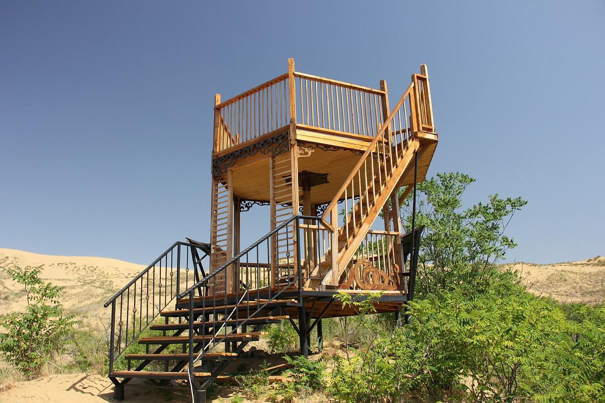 ここでは珍しい植物や動物を見つけることができる。/ 砂丘に足を踏み入れたくない人のための観測塔。