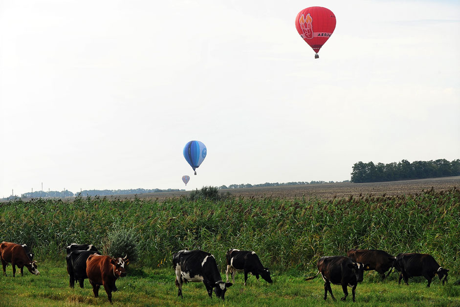 Participants of the Sky Regatta ballooning festival in Rostov Region during their flight.