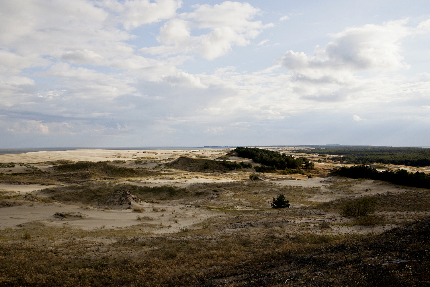 The Curonian Spit is a nearly 100-kilometer long curved sand-dune spit separating the Curonian Lagoon from the Baltic Sea Coast. It ranges in width from 400 meters at its narrowest point to 3,800 meters at its widest.