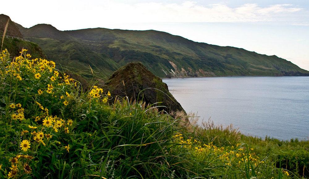 起伏の多い崖、エメラルドグリーンの草地と黒い砂のビーチを特徴とする極東ロシアのモネロン島 (海馬島) は、純粋に美しい。この小島が2008年に海洋自然公園に指定されて以来、ロシアの遠隔地の中でも観光客が最も訪問しやすい場所のひとつとなった。