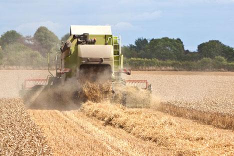 Colheita de 100 milhões de toneladas de grãos confirmou previsões do Ministério da Agricultura russo