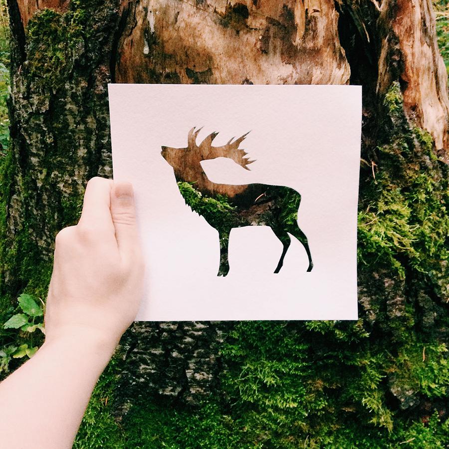 彼の作品コレクションは既に膨大なもので、キリン、クマ、リス、鳥、キツネ、蝶の他にも多数ある。巨大、鮮明で色彩に富んだロシアの自然は、数え切れないほど多くの創造的なアイデアを刺激した。