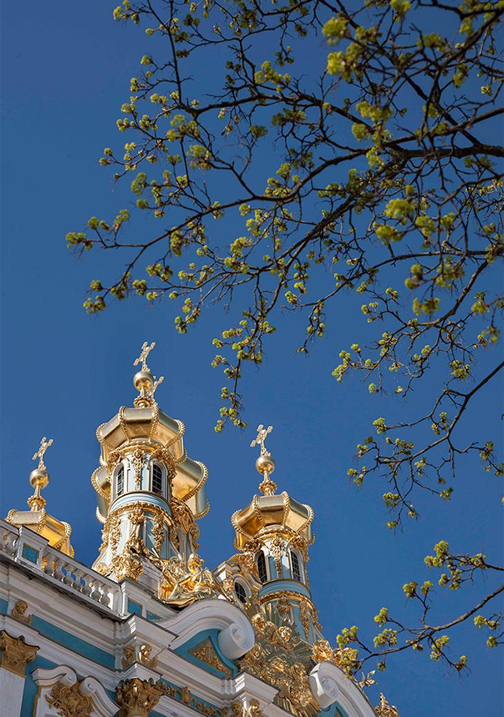 Na teritoriju se nalaze dvije glavne palače – Aleksandrova palača (neoklasicizam) i Ekaterinina palača (rokoko).
