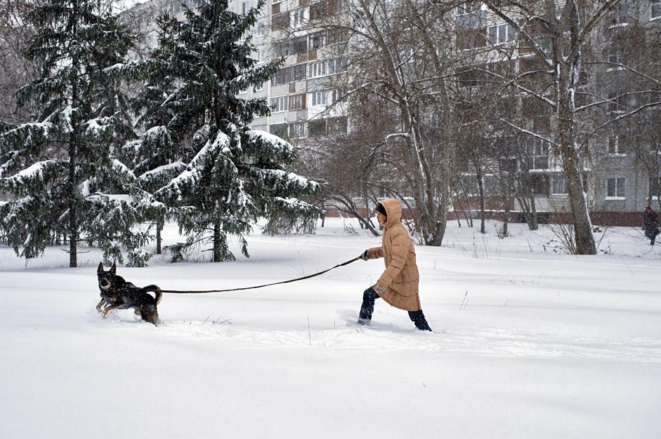 Calles nevadas en la ciudad siberiana de Omsk