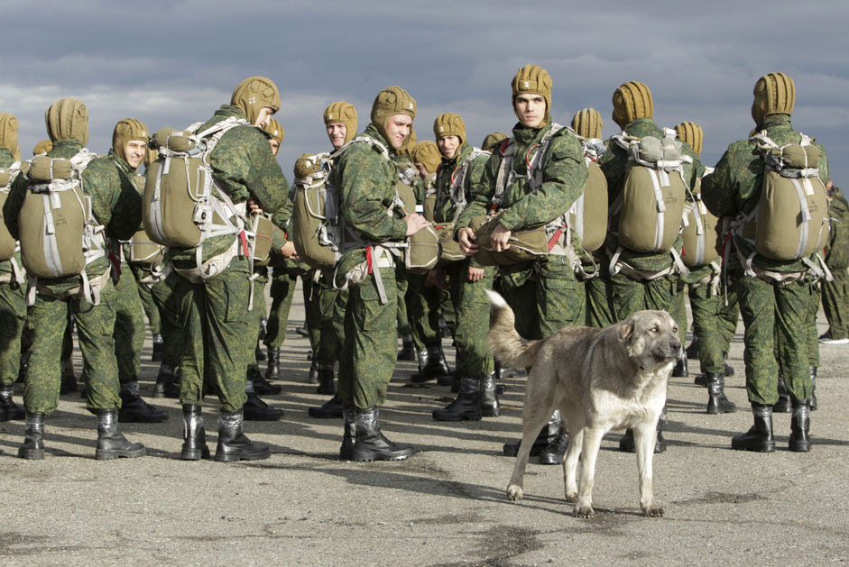A dog stands near Russian paratroopers, who are waiting to board a helicopter, during a military exercise outside the southern city of Stavropol, Russia, October 27, 2015.