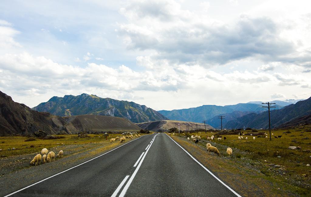 「どの移動手段を用いたかというと、クラスノヤルスクからノヴォシビルスクまで鉄道で移動し、そこから自動車に乗った。チュイスキー・トラクトの道のりでは、タヴディンスキエ洞窟、瀬民スキー峠、カラコルスカヤ峡谷や、チュイ川とカトゥニ川の合流点などに立ち寄った」