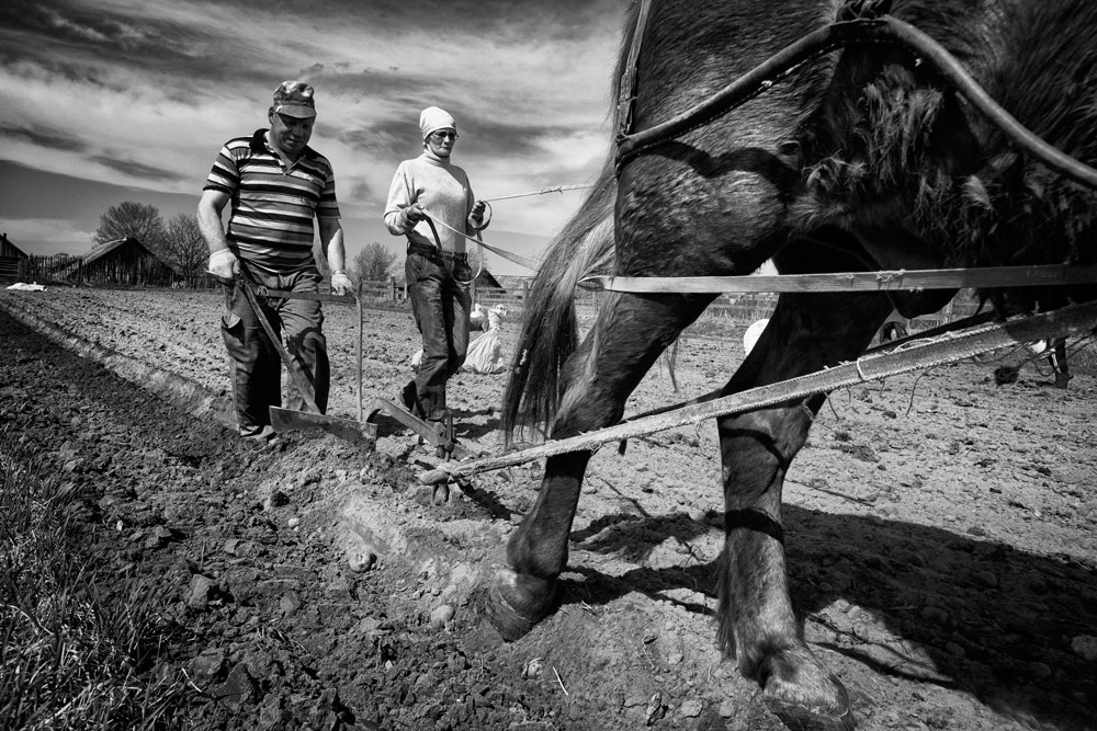 Порано во селото имало над 100 домаќинства. Функционирал и совхозот, односно државното земјоделско добро. Не бил голем, но работел добро. Се одгледувале хељда, 'рж, овес, јачмен и компири, а се чувала и стока и живина: крави и телиња, свињи, кокошки, овци и коњи.
