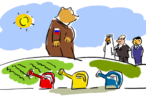 Foreign investor focus: Russia's new advanced development territories