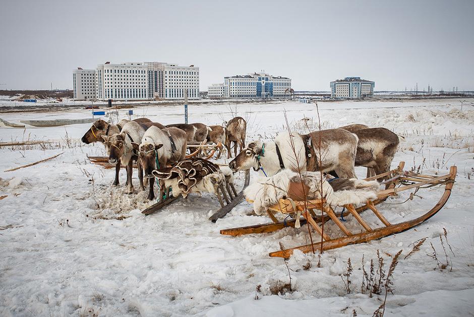 Il est possible de se rendre à Salekhard en avion depuis Novy-Ourengoï, qui possède une connexion directe à Moscou. Cependant, le service aérien n'est pas régulier. En hiver, vous pouvez prendre une voiture sur la route de glace, mais en été il n'y a pas de route. On peut aussi se rendre à Salekhard en train, mais uniquement par la voie ferrée Tioumen-Kirov. À Kirov, les voyageurs doivent changer de train pour atteindre la ville de Labytnangi, puis prendre le ferry ou la route de glace, selon la saison.
