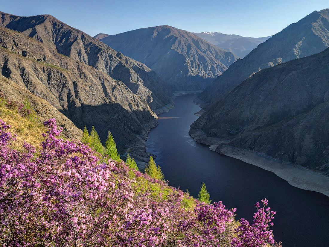 모스크바에서 3100km쯤 떨어져 있는 알타이 산맥은 남시베리아에서 가장 높은 산악지역으로 깊은 계곡과 거대한 골짜기로 갈라져 있다. 산맥은 중앙아시아로 뻗어나가며 러시아, 몽골, 중국, 카자흐스탄 등 4개국을 가로지른다.