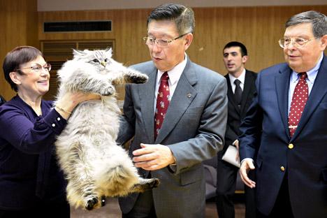 2013 bekam der Gouverneur der japanischen Präfektur Akita Norihisa Satake einen sibirischen Kater von Putin als Geschenk.