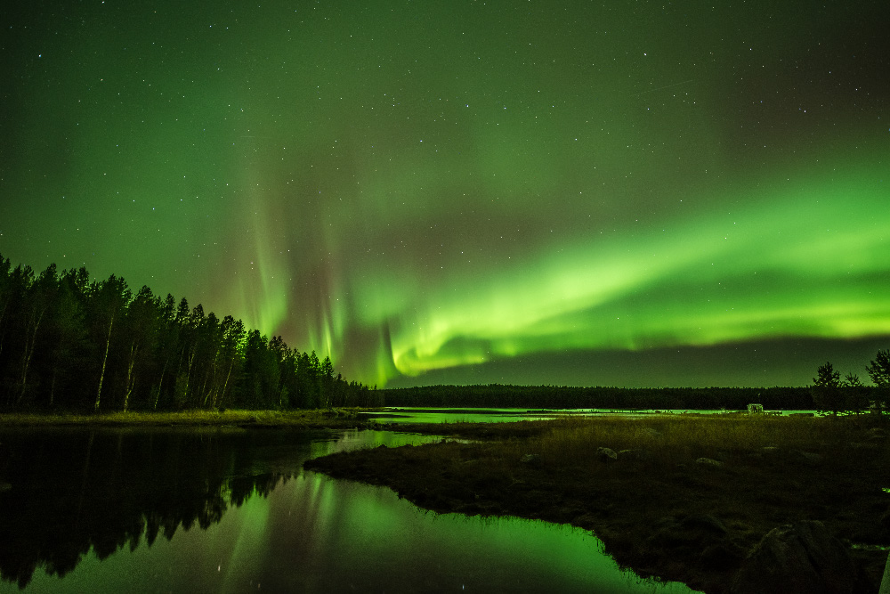 Night-time on the Arctic Circle has never been so bright!